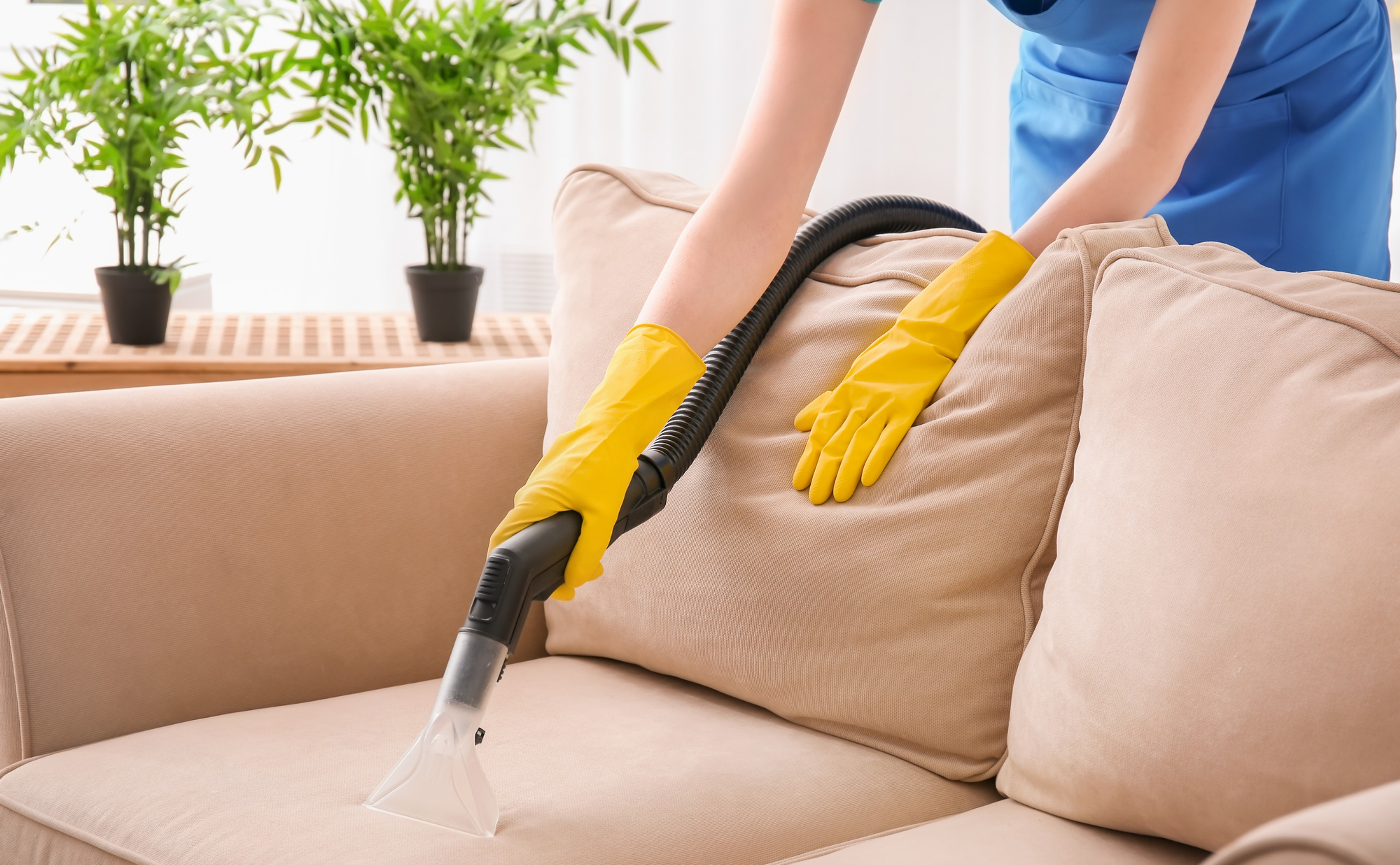 Couch_cleaning